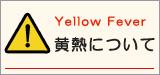 黄熱について