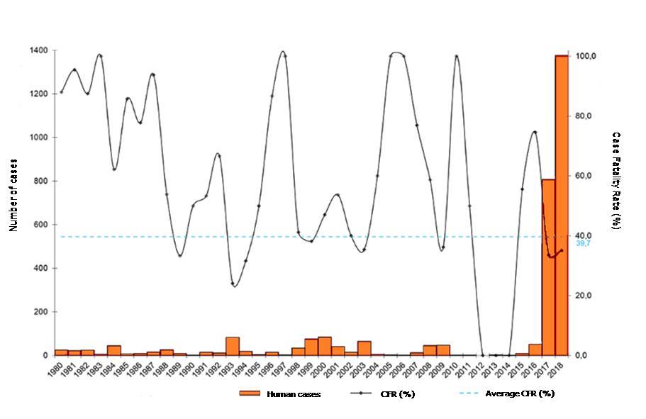 数 インフルエンザ 2019 死亡