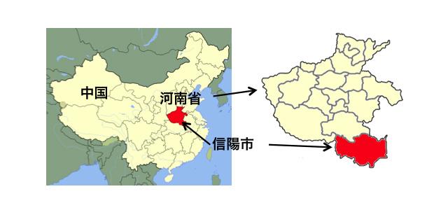 FORTH|新着情報|中国河南省で...